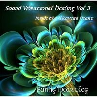 Sound Vibrational Healing, Vol. 3: Inside the Weavers Heart